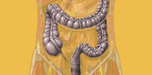 Idrocolonterapia: le zone riflessogene del colon